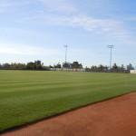 Morse Stadium 19