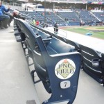 PNC Field Ballpark Hunter 20